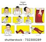 symptoms of heat stroke... | Shutterstock .eps vector #732300289