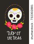 day of the dead. vector cartoon ... | Shutterstock .eps vector #732302881