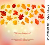 autumn background with leaves.... | Shutterstock .eps vector #732343171