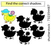 find the correct shadow....   Shutterstock .eps vector #732354487