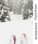 the front of the skis looks in... | Shutterstock . vector #732379165