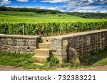 borgundy. vineyards vosne roman ... | Shutterstock . vector #732383221
