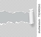 realistic vector torn paper ... | Shutterstock .eps vector #732400261