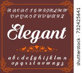 vector set of handwritten abc... | Shutterstock .eps vector #732425641