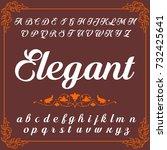 vector set of handwritten abc... | Shutterstock .eps vector #732425641
