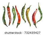 mixed colored chili peppers on... | Shutterstock . vector #732435427