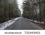asphalt road in a winter pine... | Shutterstock . vector #732443401