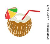 tropical juice icon | Shutterstock .eps vector #732445675