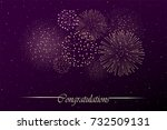 firework show on night sky... | Shutterstock . vector #732509131