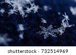 snowflakes | Shutterstock . vector #732514969