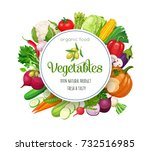 round banner with vector... | Shutterstock .eps vector #732516985