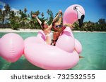 summer lifestyle portrait of... | Shutterstock . vector #732532555