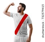 athlete   fan celebrating on... | Shutterstock . vector #732579415