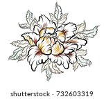 hand drawn peony flower chinese ... | Shutterstock .eps vector #732603319