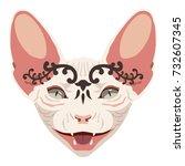 isolated vector icon. cartoon... | Shutterstock .eps vector #732607345