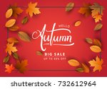 autumn sale background  hand... | Shutterstock .eps vector #732612964