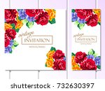 vintage delicate invitation... | Shutterstock .eps vector #732630397