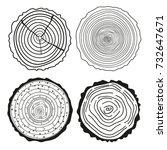 tree rings. set of cross... | Shutterstock . vector #732647671