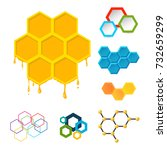 vector linear hexagon design... | Shutterstock .eps vector #732659299