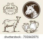 vector image of a goat  a jug... | Shutterstock .eps vector #732662071