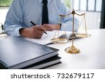 legal counsel presents to the...   Shutterstock . vector #732679117