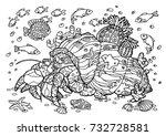 crab hermit sea coloring book... | Shutterstock .eps vector #732728581