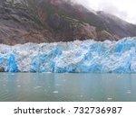 tracy arm's fjord glacier...   Shutterstock . vector #732736987