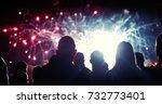crowd watching fireworks | Shutterstock . vector #732773401