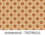 gentle  spring floral on beige  ... | Shutterstock . vector #732796111