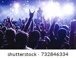 concert crowd. silhouettes... | Shutterstock . vector #732846334