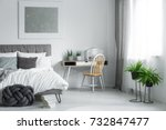 small wooden chair standing by... | Shutterstock . vector #732847477