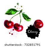 hand drawn watercolor... | Shutterstock . vector #732851791