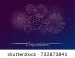 firework show on night sky... | Shutterstock . vector #732873841