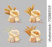 agricultural cereals sacks... | Shutterstock .eps vector #732883519