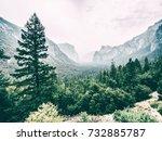 Yosemite Park  California  Usa
