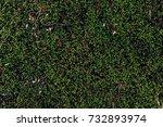 nature backgrounds. natural...   Shutterstock . vector #732893974