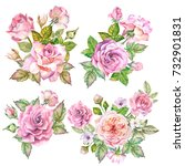 set of roses bouquets.watercolor   Shutterstock . vector #732901831