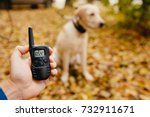 dog with electric shock collar... | Shutterstock . vector #732911671