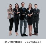 group of smiling business... | Shutterstock . vector #732966187