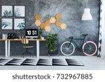 plant on a shelf between green... | Shutterstock . vector #732967885