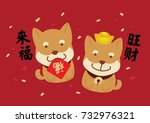 2018 chinese new year  cute... | Shutterstock .eps vector #732976321