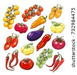 collection of hand drawn... | Shutterstock .eps vector #732984475