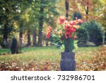 bouquet of poppy flowers in a... | Shutterstock . vector #732986701