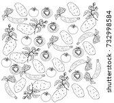 vegetables figure | Shutterstock .eps vector #732998584