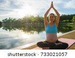 pregnancy exercise. prenatal... | Shutterstock . vector #733021057