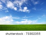 field on a background of the... | Shutterstock . vector #73302355