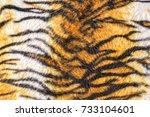 tiger fur pattern | Shutterstock . vector #733104601
