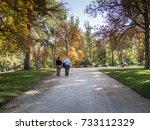 parque del retiro | Shutterstock . vector #733112329
