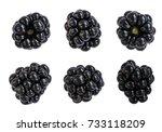 group of six ripe blackberries...   Shutterstock . vector #733118209
