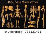 golden luxury human bones...